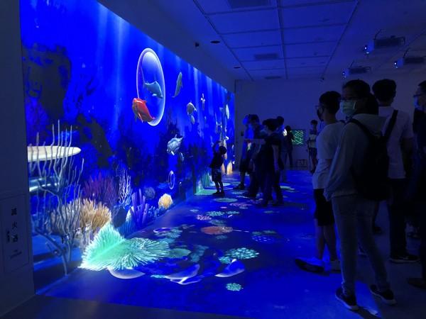 Xpark絕美海底世界攻佔IG!幕後「台灣之光」進懋醞釀30年 夢幻投影