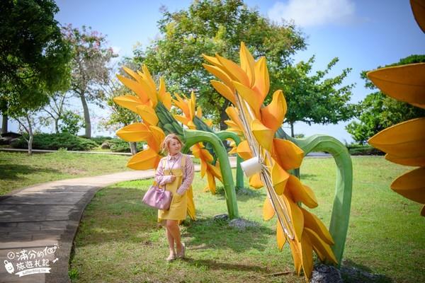 巨大向日葵比人還高!三芝免門票療癒景點 還有粉嫩夢幻美人樹 | ETto