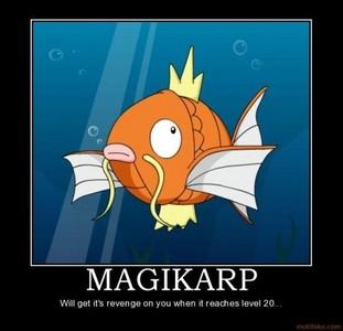蛤?最弱的神奇寶貝鯉魚王也能殺人?