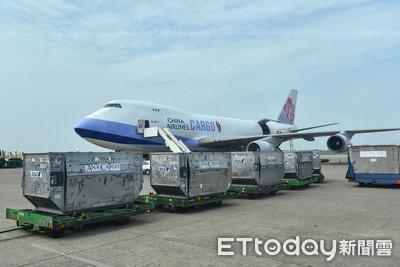 華航榮獲2020年全球航空貨運風雲人物 前11月貨運營收年增83%