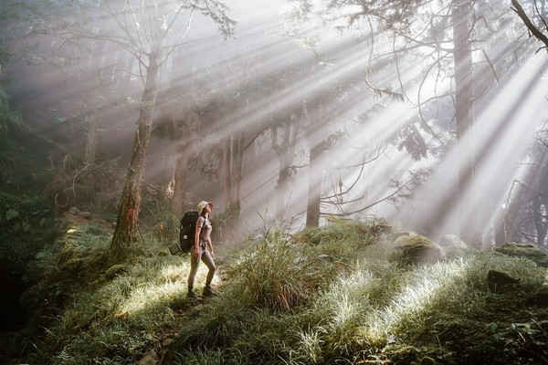 全台5大療癒系登山路線 尋訪消失的森林鐵道、看天使的眼淚