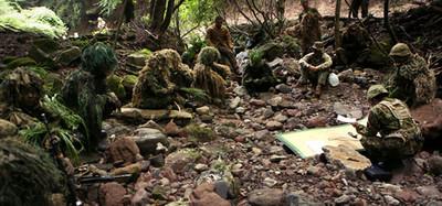 大挑戰!你能找到埋伏的德國狙擊手?