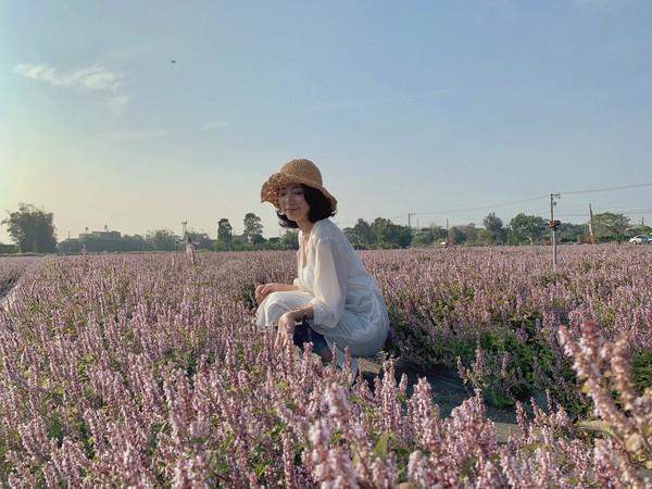粉紫天堂「台版普羅旺斯」提前開花!花彩節大溪還有4公尺獨角獸 | ETt