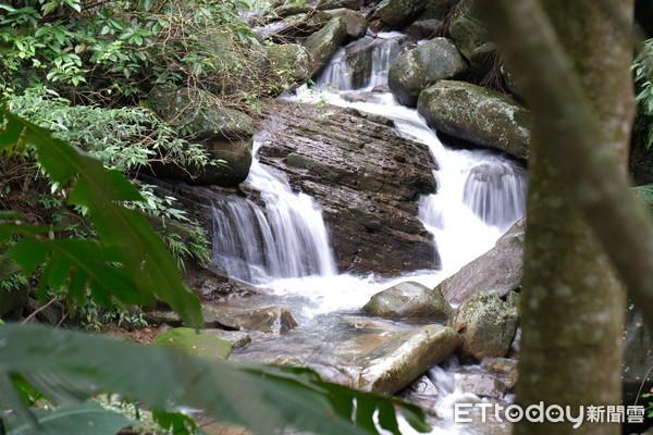 基隆秘境步道超清幽!「免20分就看到滑瀑」還有峽谷、石橋
