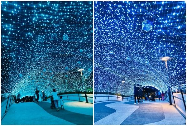 藍色燈海隧道現身北捷中山站!還有「東京聖誕市集」超浪漫