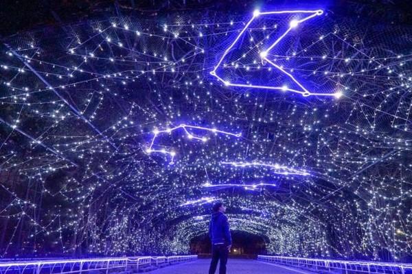 屏東飄雪了!超夢幻「極光聖誕村」10大燈區曝光 抬頭看滿天星座