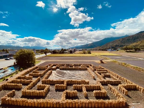 台東新景點!關山打造305坪「稻草迷宮」 明年3月底前都能玩