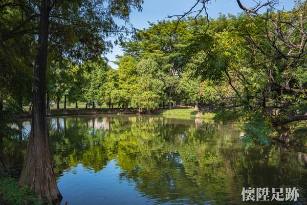 美麗夢湖+整排落羽松!台南九公頃城市秘林 約會必賞浪漫荷花池 | ETt