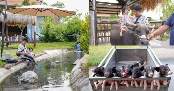 一票餵到底!宜蘭傻萌系親子農場 抱可愛小豬豬、跟大水牛散步 | ETto
