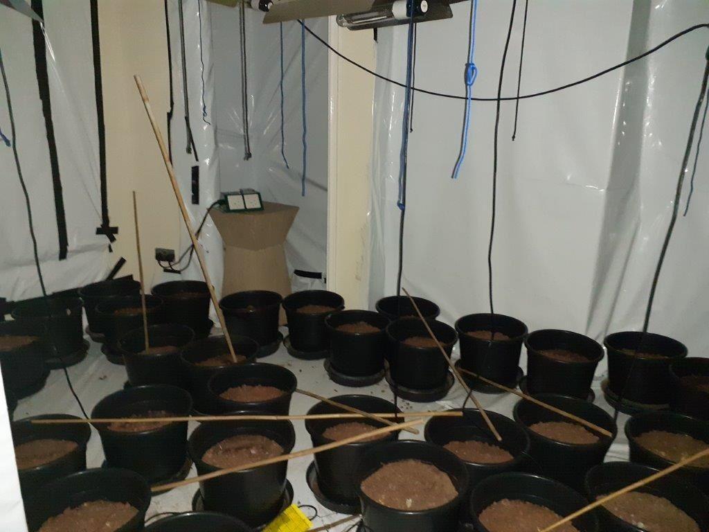 ▲▼房仲網站掛大麻培育室照片 。(圖/翻攝自landwood property auctions)