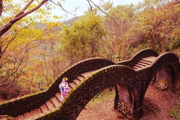 汐止拱北殿楓葉終於轉紅!古橋配「楓紅毯」如神遊日本寺廟