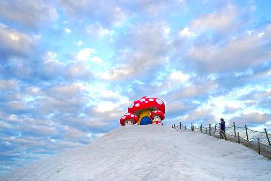 台南鹽山變可愛了!6公尺高菇菇站山頂 還能順便拍鹽田最浪漫夕陽