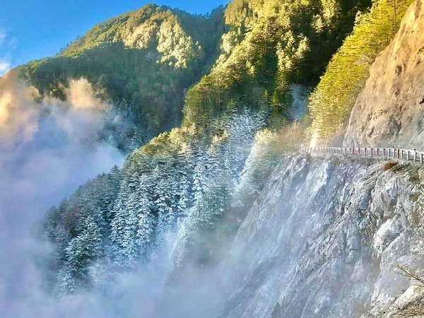 全台3條夢幻「賞雪公路」!數公里路樹結滿霧淞 宛如開進銀白仙境