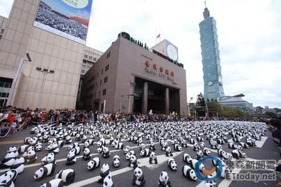 1600紙貓熊北市府展首日吸27萬人