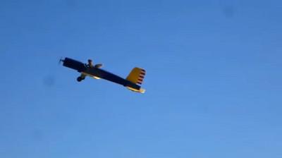 NO!野生松鼠把我的模型飛機開走了..