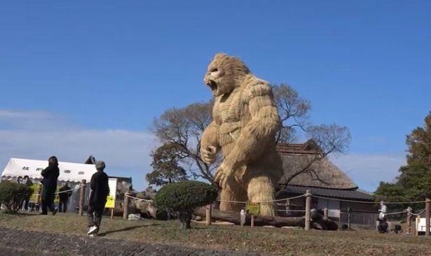 ▲▼日本福岡的稻草大猩猩。(圖/翻攝自YouTube/hiro yamaguchi)
