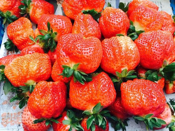 草莓「維他命C含量豐富」 苗栗大湖推各式招牌美食霸氣裝盤 | ETtod