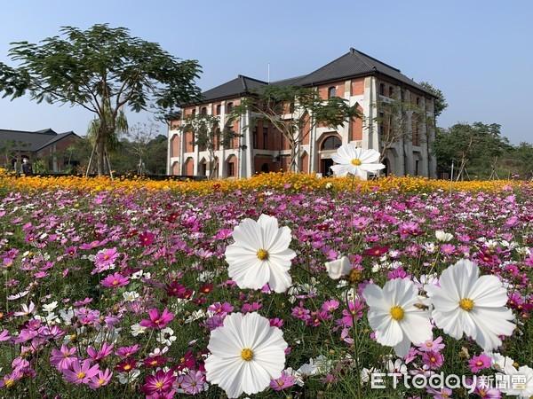 山上花園水道博物館園區繁花盛開 歡迎民眾台南走春 | ETtoday地方