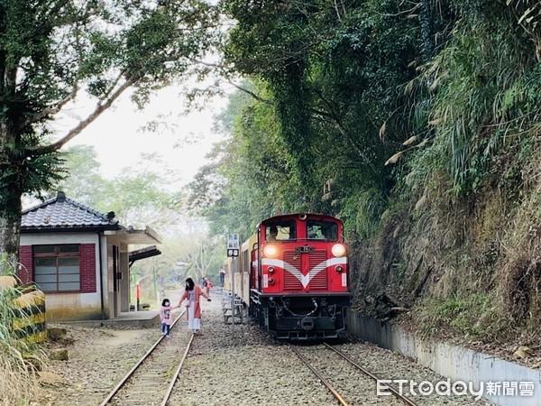 找尋「開車到不了」神秘車站!阿里山森鐵之旅 還能看火車繞下山 | ETt