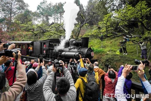 阿里山花季限定遊程 百年蒸汽火車掛載檜木車廂高山賞櫻 | ETtoday