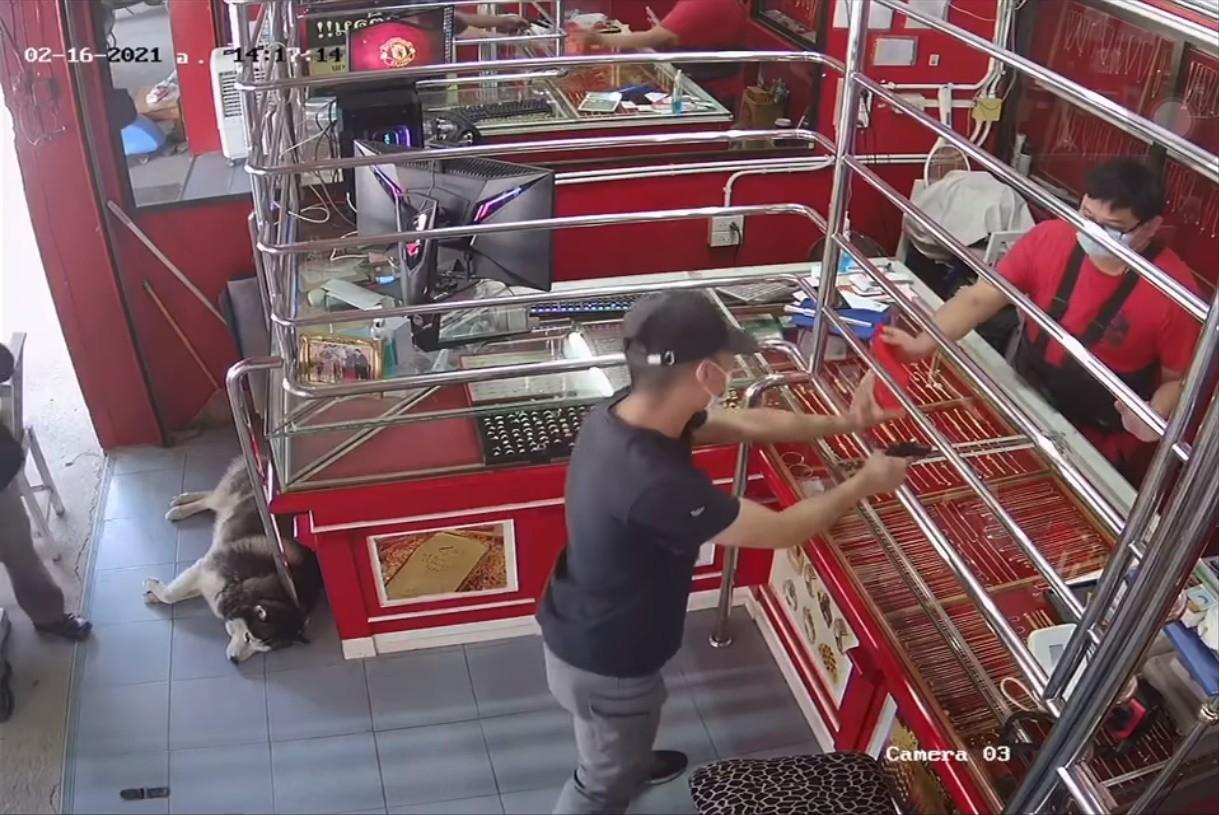 ▲▼珠寶店模擬搶劫 二哈躺地爽睡:一天又和平過去(圖/翻攝自Facebook)