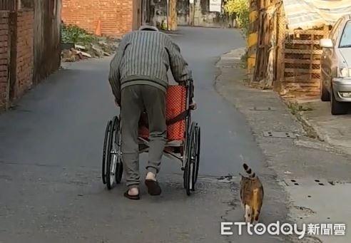 78歲爺推輪椅送「愛心餐」 浪孫認出他...小碎步陪在身旁暖哭網
