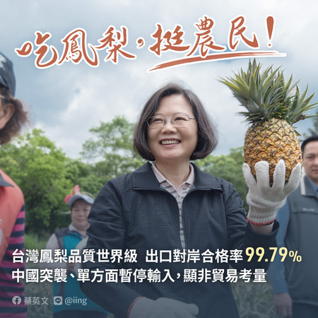 蔡英文挺鳳梨農 28日到高雄視察產銷、對談 | ETtoday政治新聞