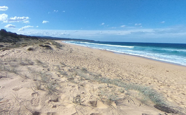 ▲▼澳洲塔斯拉(Tathra)附近的邦代海灘(Bournda Beach)。(圖/翻攝Google Maps)