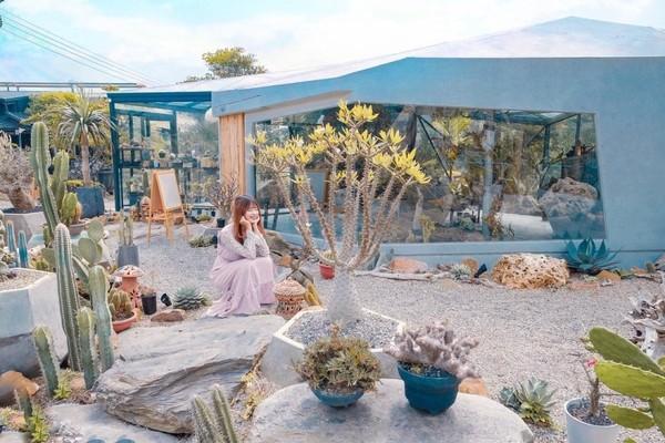 台中打卡熱點!多肉植物環繞清水模咖啡廳 像沙漠裡綠洲超夢幻 | ETto