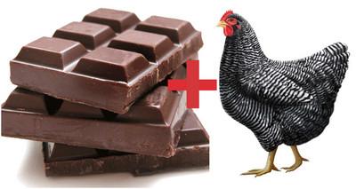 當巧克力遇上炸雞,味道簡直太驚奇!