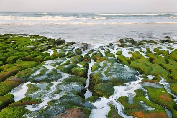 春天必看!全台3處絕美「綠石槽」美景 數百公尺抹茶海岸線超療癒 | ET