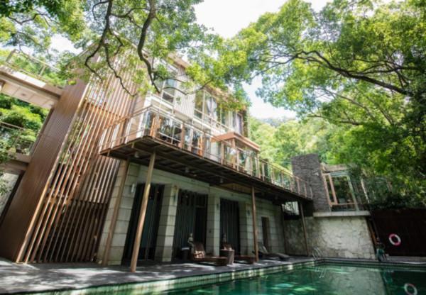 房裡有顆樹!苗栗超忘憂玻璃民宿 獨享整片樟木林+私人泡湯池