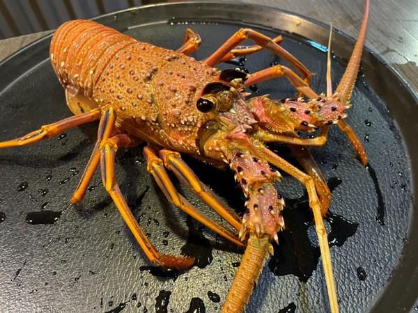 先別改名!名字有「龍蝦」 金門頂級鍋物免費吃、1字符合享半價