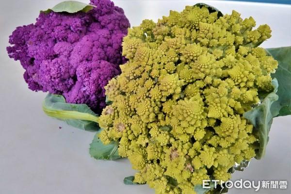 春天囡仔面!呷有機蔬菜尚健康 鶯歌「秦佳園有機農場」報你知 | ETto