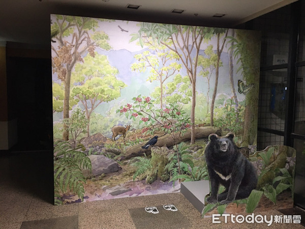 玉山國家公園36歲紀念 南部園區重建紀錄片+台灣黑熊檔案展登場 | ET