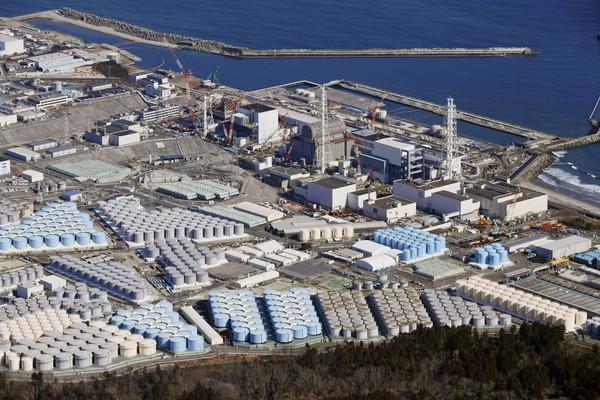 日本排放核廢水!學者點名「台人愛吃的這2種海鮮」恐受害