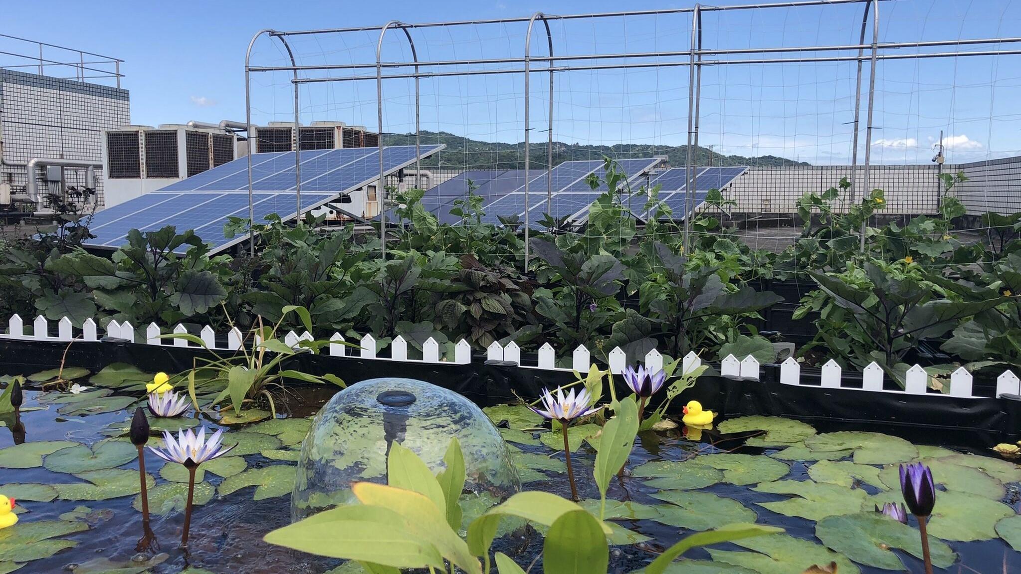 ▲▼鴻海首次揭露去年發電量、太陽能發電廠數量及綠電用量。(圖/翻攝自Linked in/鴻海精密工業股份有限公司)
