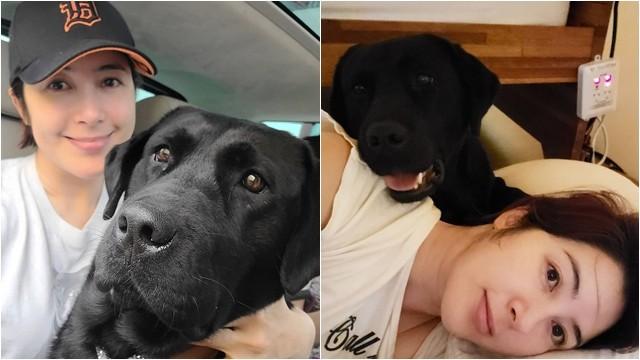 ▲▼李智安的愛犬東東疑似慘遭陌生人毒死。(圖/翻攝自Instagram@mungcongrungongming)