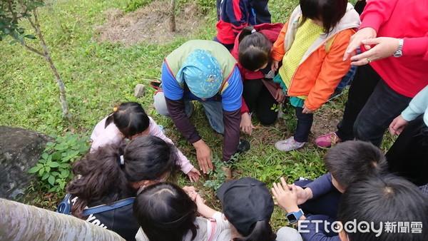 台東「鸞山森林文化博物館」體驗 免費限額40人5/3起報名 | ETto