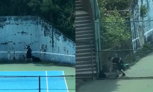 短褲男網球場公然虐狗! 「球棒+牽繩抽打」黑狗逼竄角落發抖