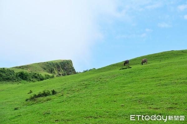 走進Windows桌面只要30分!360度山海風光看牛兒吃草、石頭厝用餐
