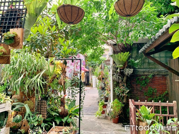 綠手指看過來!秀出家中花草植物照「永生花玻璃盅」免費拿 | ETtoda