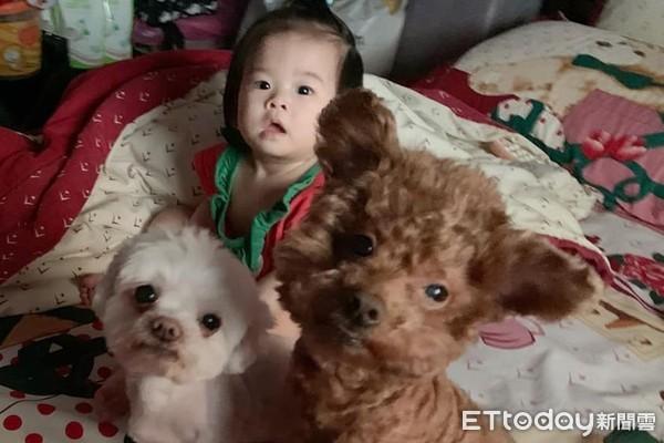 頭毛「作伙炸開」!9月大寶寶撞臉毛孩 網笑:都是媽媽親生的