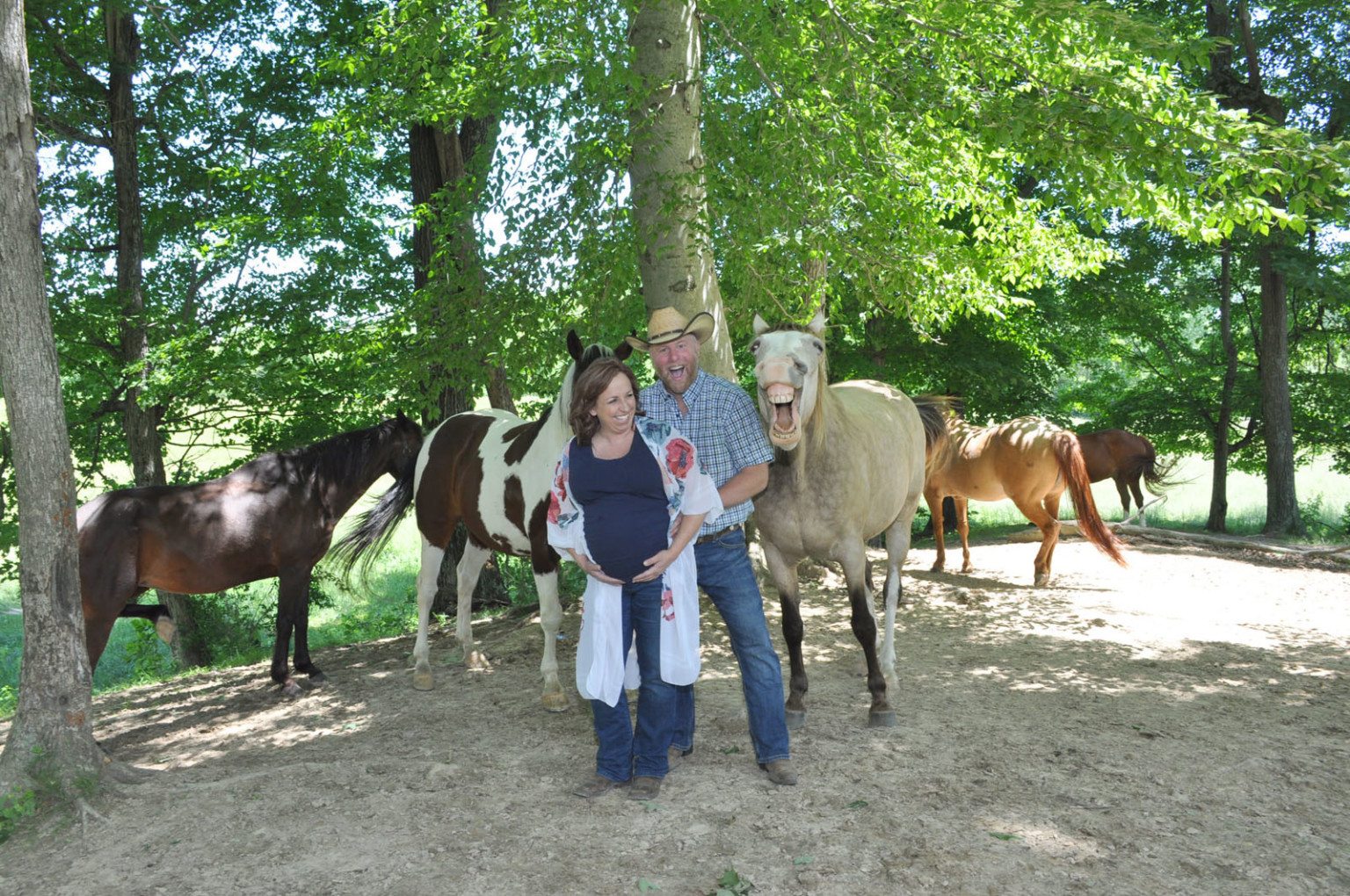 ▲▼搶鏡的馬。(圖/翻攝自Facebook/Photography By Kristen)