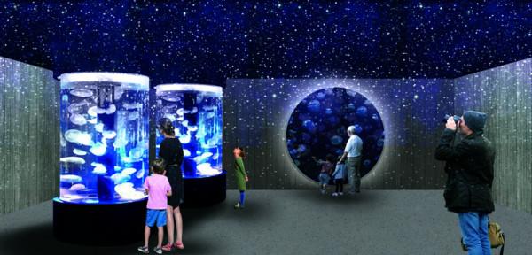 北北基首座!基隆「潮境智能海洋館」10月開幕 有海底隧道超擬真
