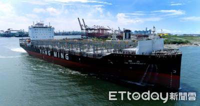 陽明6月、Q2營收雙創新高 再添1貨櫃船迎接海運旺季
