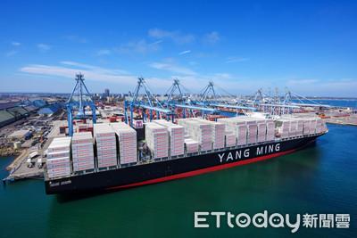 當沖客激情冷卻 貨櫃三雄與其他航運股價穩量縮