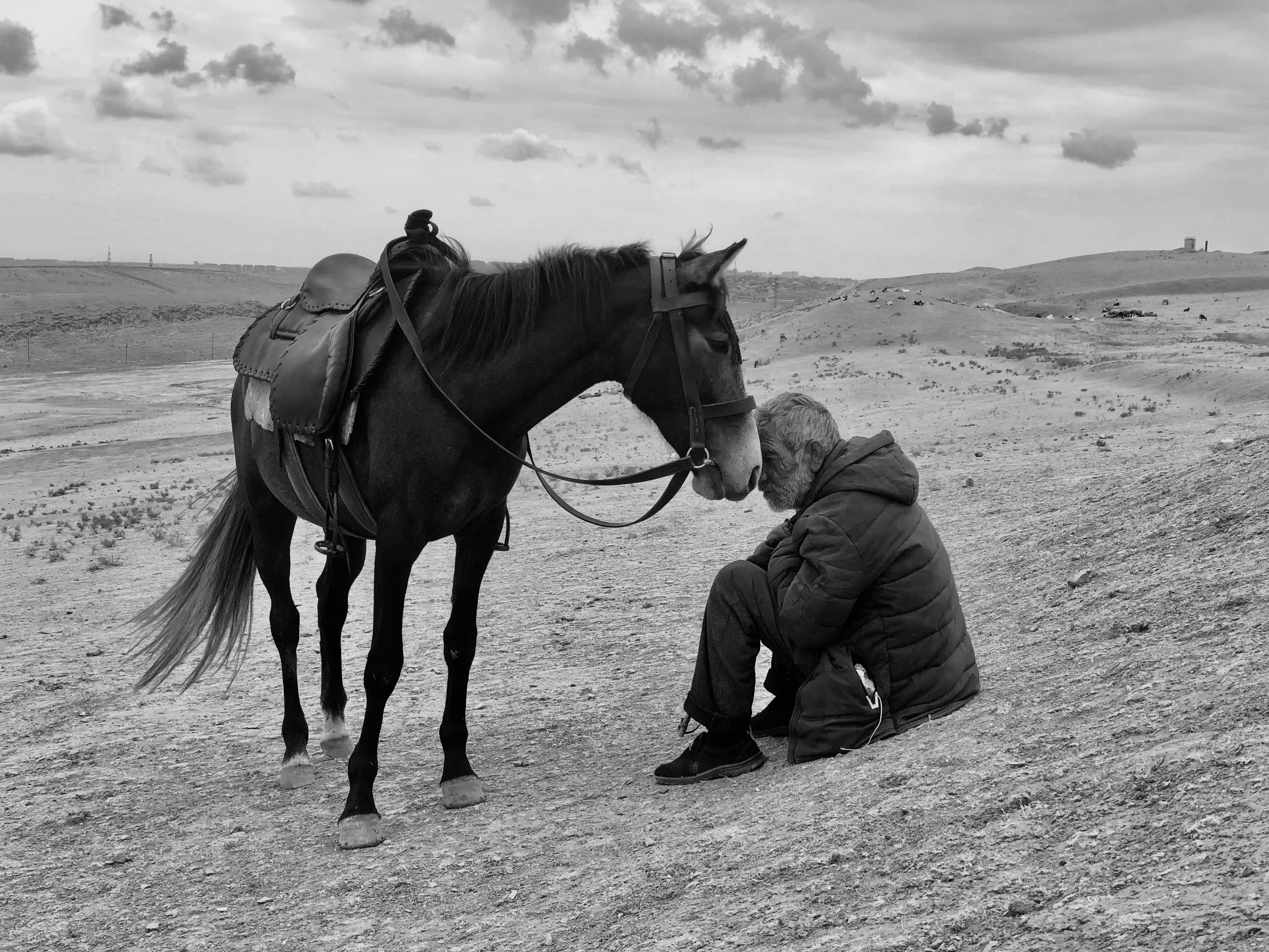 ▲第14屆iPhone攝影獎(IPPAWARDS)攝影師獎第一名。(圖/蘋果提供)