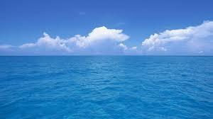 顯微鏡下的大海真相..全身開始癢起來