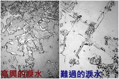 顯微鏡下,快樂和難過淚水結晶大不同